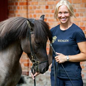 Hippologprogrammet har både islands och travinriktning. På bilden står en kvinna i Wångentröja och håller i tygeln på en islandshäst.