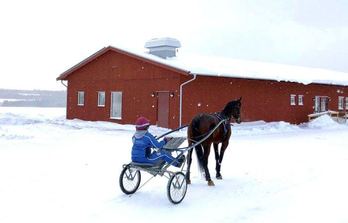 Rött modernt enplanshus i vinterlandskap. Framför huset skrittar ett travhäst med kusk i sulky förbi.
