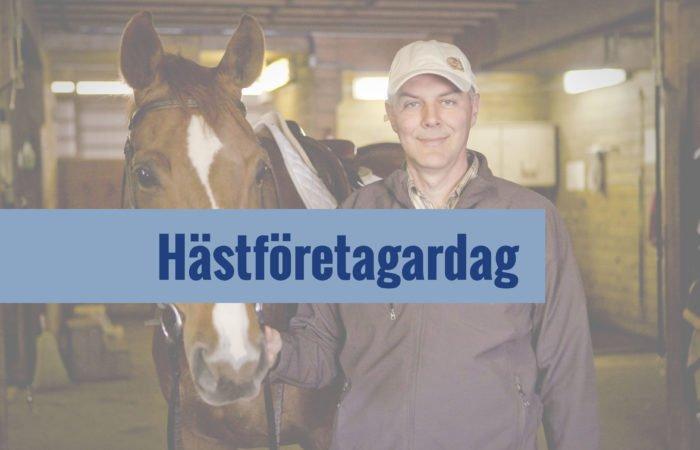 Angelo Telatin, medelålders man iförd keps i stall håller i en sadlad fuxfärgad häst