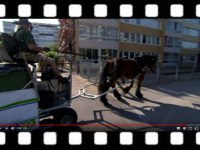 Vagn med soptunnor körs av en ardenner i stadsmiljö