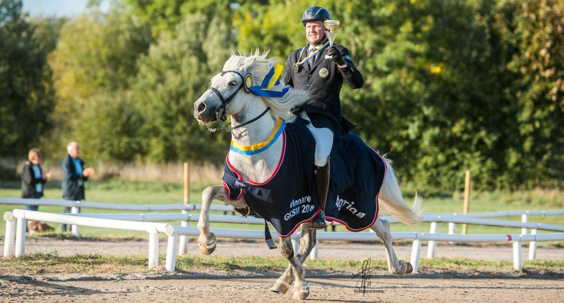 Ryttar i kavaj på vit islandhäst i tölt. Hästen har ett blått vinnartäcke från Agria och ryttaren håller en pokal i ena handen.