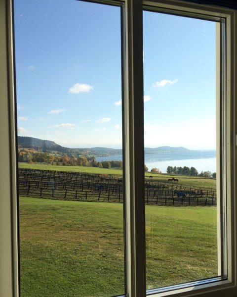 Utsikt genom fönster från konferensrum över gröna hästhagar, sjö och berg