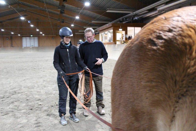 Inströktör Anders står bredvid en kuskelev som håller i tömmarna bakom nordsvenska brukshästen Tross