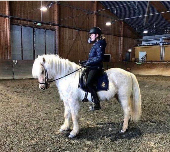 Vilma rider på en islandhäst, ljusfux, i Wångens ridhus