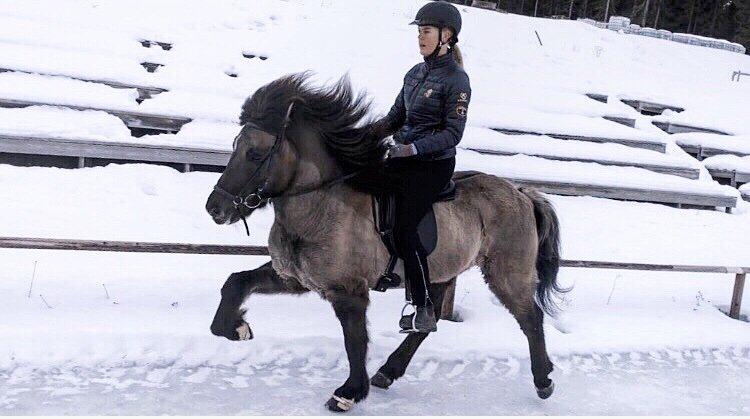 Studenten Vilma rider en islandshäst i tölt på en snötäckt bana