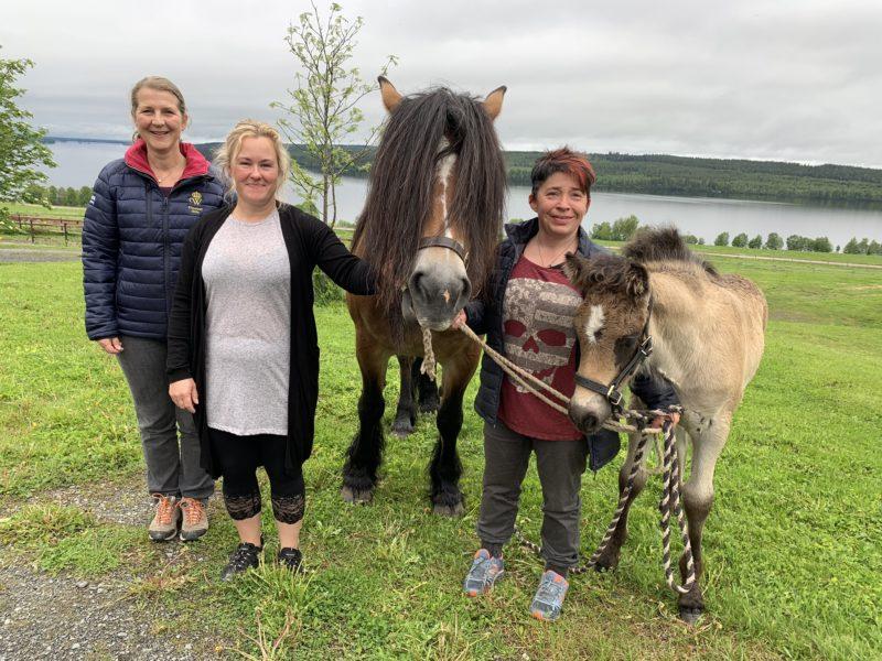 Tre kvinnor står på gräset med nordsvensk märr med föl, i bakgrunden sjö och skog