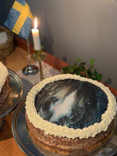 Tårta med bild på mulen på en nordsvensk brukshäst på