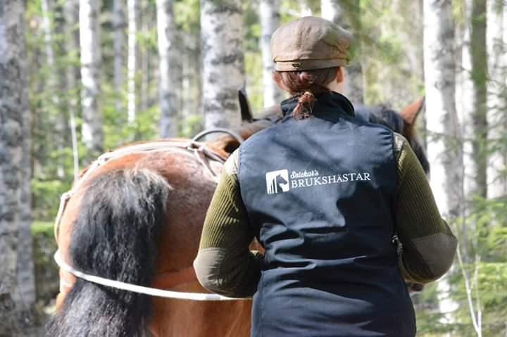 Emelie syns bakifrån iklädd en väst med texten Snickars brukshästar. Hon håller i tömmarna och går bakom en brun häst genom en björkskog.