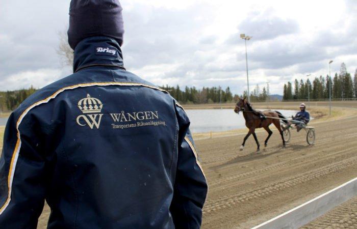 En lärare står med ryggen mot vid travbanan på Wången. Läraren studerar en hippologpstudent som kör häst på Wångens travbana