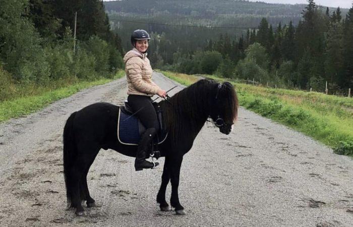 Ryttare på svart islandshäst sedd från sidan på grusväg genom skog