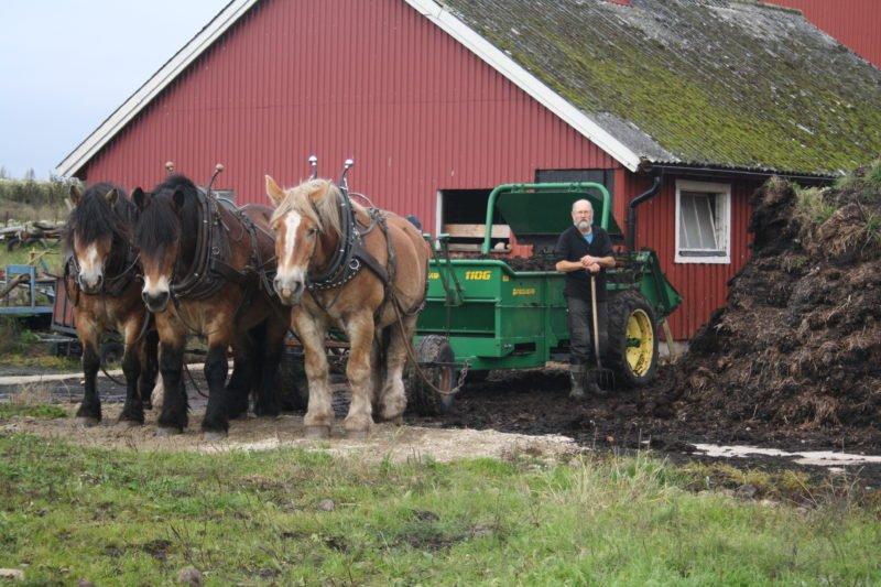 Man med trespann framför jordbruksmaskin utanför ladugård