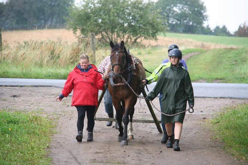 Tre personer går bredvid en häst och en kör. De går på en grusväg