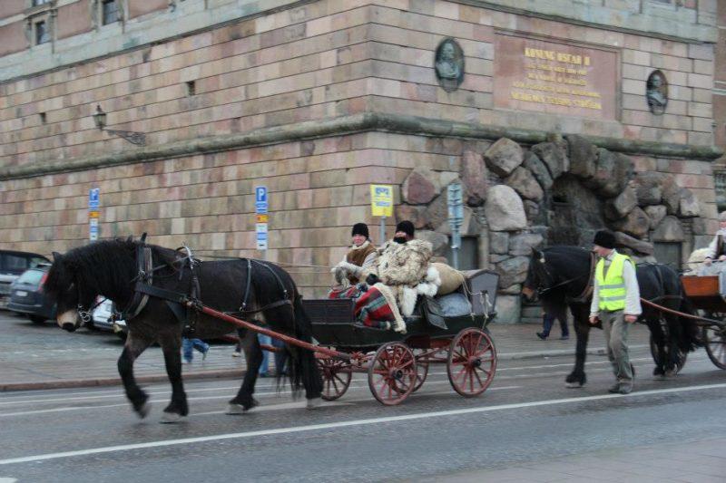 Nordsvensk brukshäst drar vagn utanför slottet i Stockholm. I vagnen sitter två personer i förda traditionella forbondekläder som vargskinnspäls och väst.
