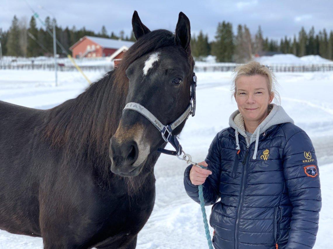 I bilden syns en framdelen på en häst - huvud och bog, hästen har grimma och brevid står en kvinna och håller i grimskaftet. Det är vinter och snö och i bakgrunden syns hästhagar.