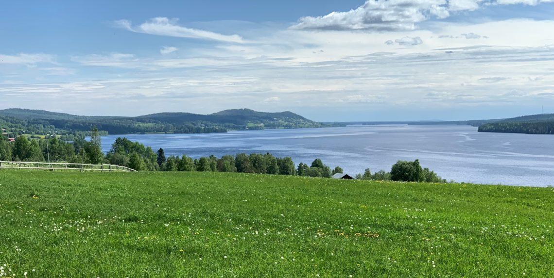 Utsikt över grön äng och Alsensjön