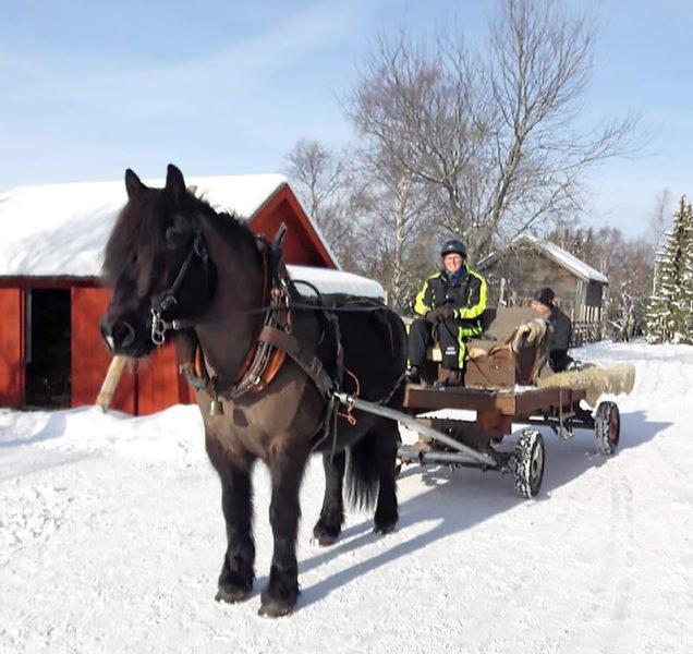 Häst och vagn i vinterlandskap.