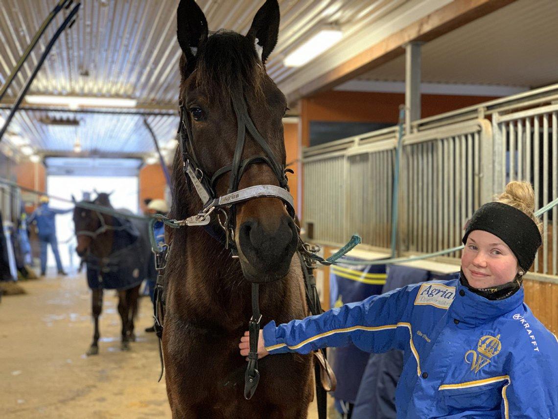 Häst på stallgång. bredvid står flicka och klappar hästen. Flickan har pannband och jacka med Wångenemblem.