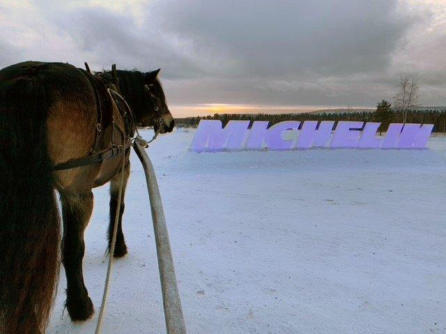Nordsvensk brukshäst syns bakifrån med skaklar och sele på. Snön ligger på marken och längre bort syns Michelinbokstäverna utkarvade i is