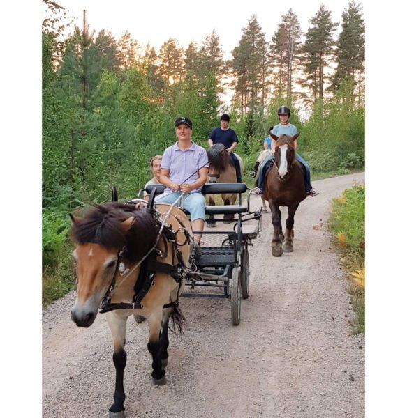 Grusväg genom skog på sommaren. Ett ljusbrunt russ drar vagn, bakom syns två hästar med ryttare