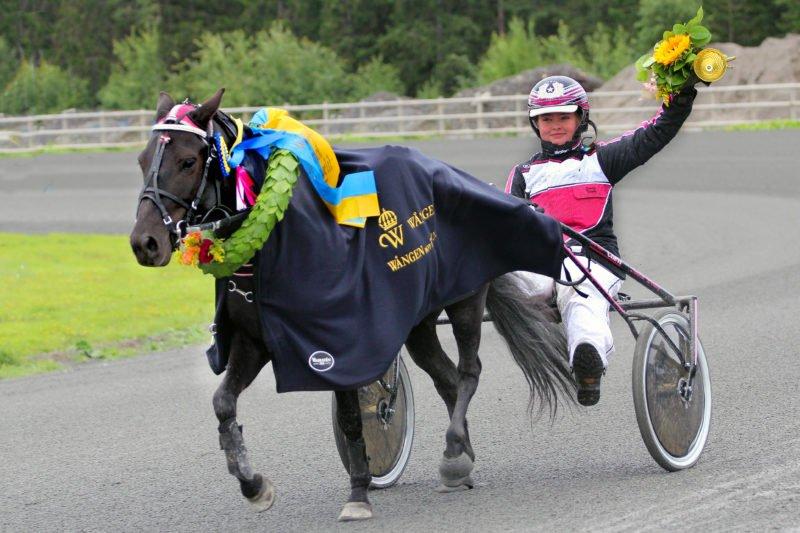 Svart häst med segerkrans och blått vinnartäcke med Wångens logotyp på körs av tjej med ena handen sträckt till segergäst i luften