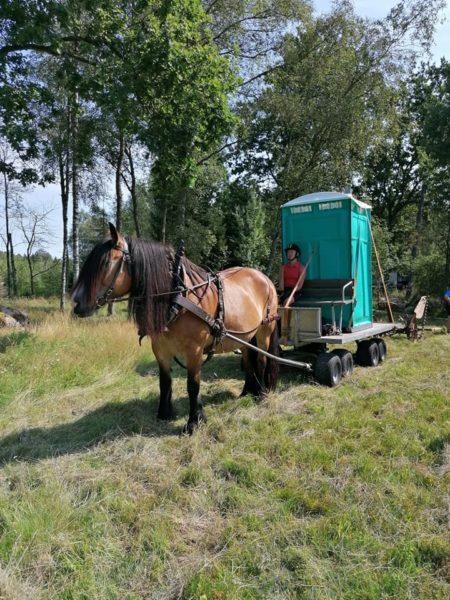 Kvinna kör vagn med bajamaja på (portabel toalett). Nordsvensk brukshäst drar ekipaget.