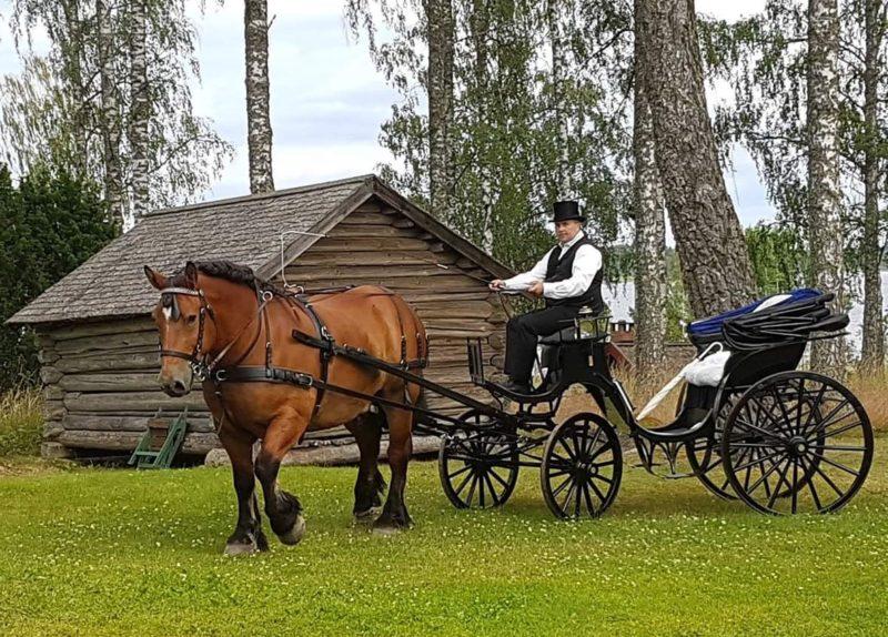 Man i vit skjorta och svart väst kör häst över grästun. I vagnen syns ett vitt paraply.