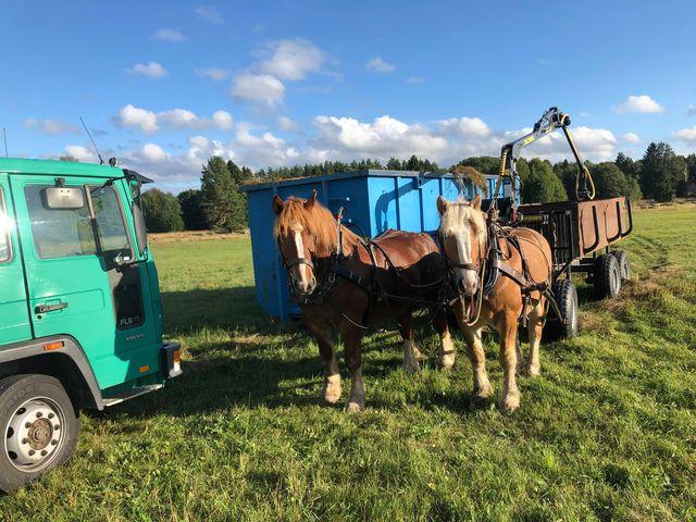 Ekipaget står framför griplastarvagnen medan gräs på vagnen lastas över till en conteiner.