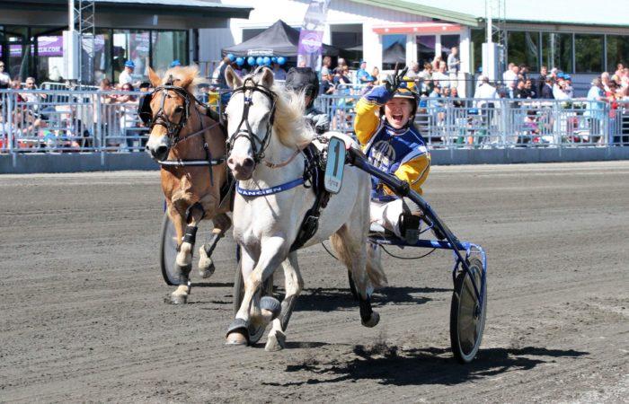 Vit ponny körs av kusk i Wångens gula och blå travdress. Kusken gör segertecken i luften med högerhanden och ser väldigt glad ut