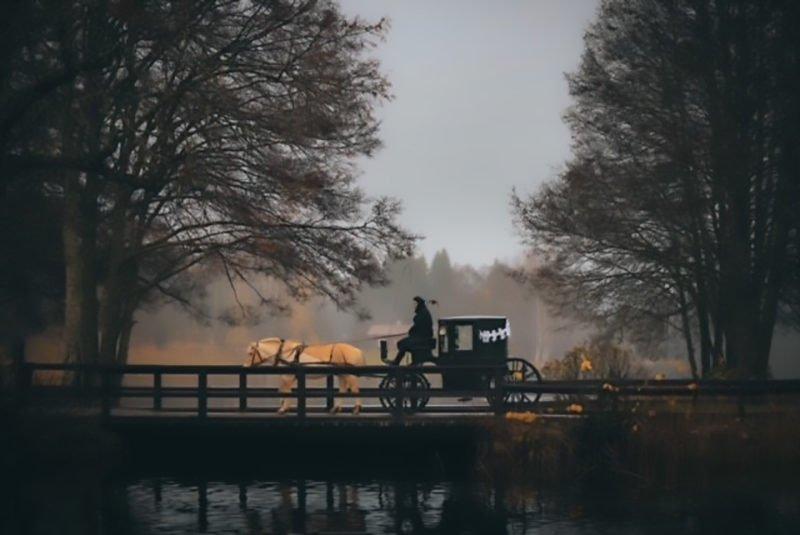 Som en bild ur en saga. Dimmig höstkväll passerar ett vagn dragen av en fjordning en bro. På kuskbocken sitter en högtidsklädd kusk. Vagnen är dekorerad med vitt band.