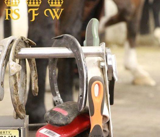 Del av skostol syns med verktyg och hästskor hängande på. I bakgrunden syns benen på en häst
