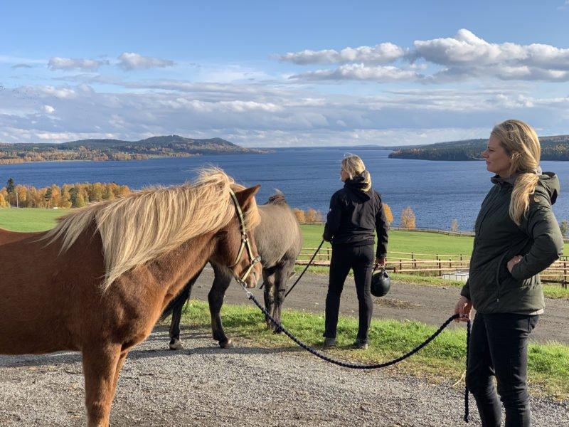 Två kvinnor håller i varsin islandshäst och spanar på utsikten över Alsensjön.