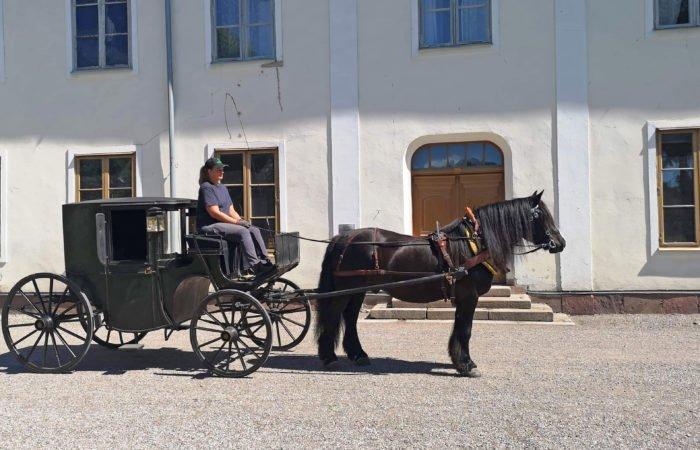 Svart häst spänd framför täckt vagn av klassisk modell står framför en herrgårdsliknande byggnad